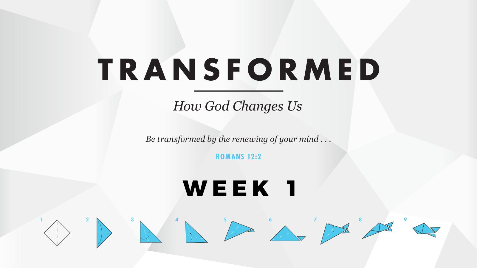 Transformed – Week 1