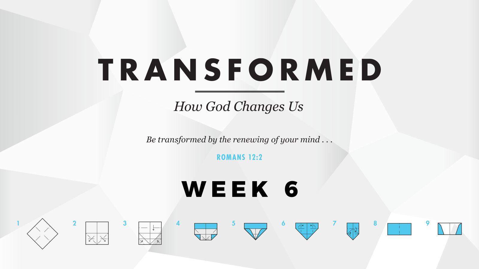 Transformed – Week 6