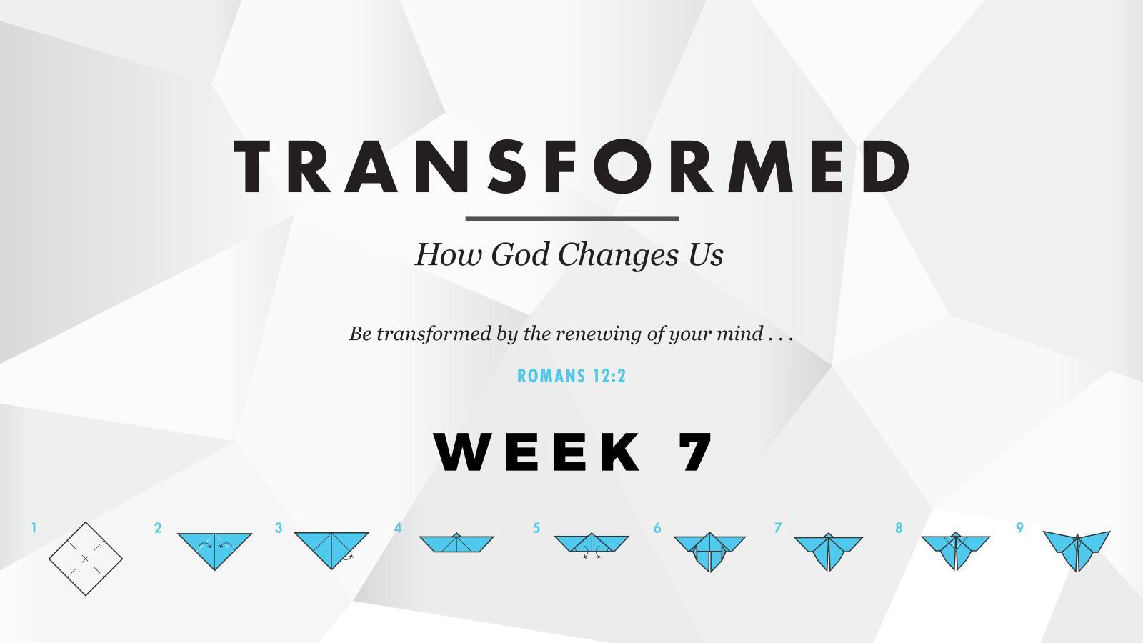 Transformed – Week 7